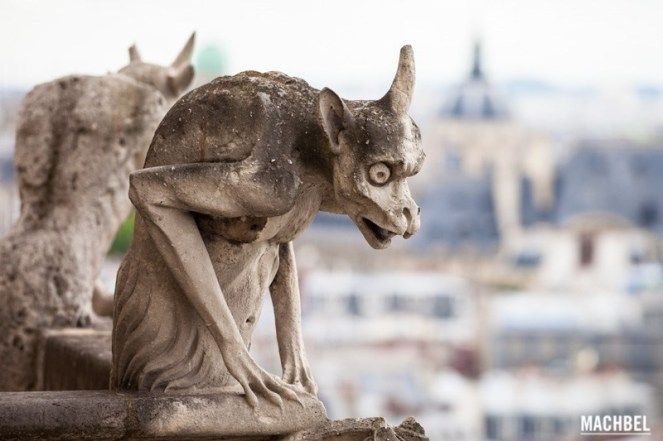 diablillo-asustado-quimeras-o-gc3a1rgolas-de-notre-dame-parc3ads-francia-by-machbel